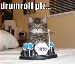 drum roll cat